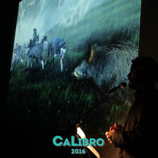 http://www.calibrofestival.com/wp-content/uploads/2017/02/IMG_9694-540x540.jpg