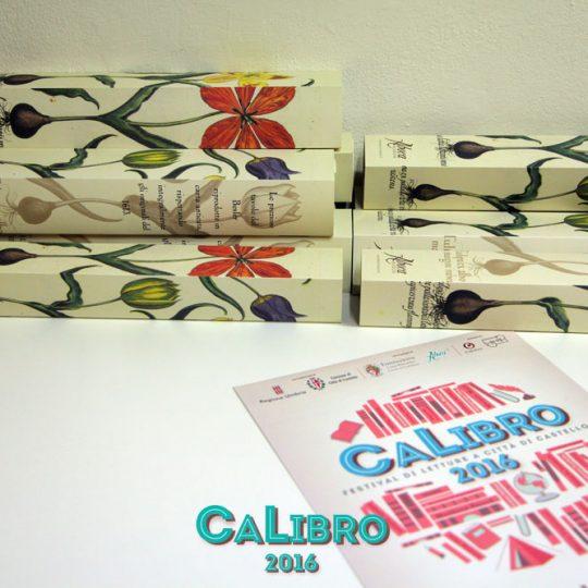 https://www.calibrofestival.com/wp-content/uploads/2017/02/IMG_9591-540x540.jpg